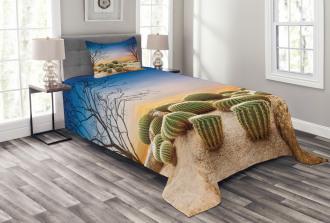 Cactus Balls on Mountain Bedspread Set