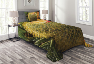 Cactus Plant with Spikes Bedspread Set
