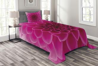 Fresh Bloom Petal Nature Bedspread Set