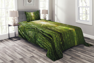 Summer Trees Upward View Bedspread Set