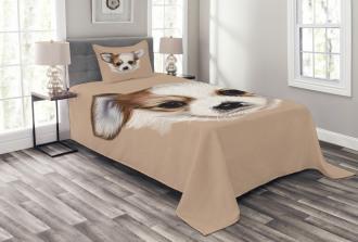 Cute Little Furry Friend Bedspread Set