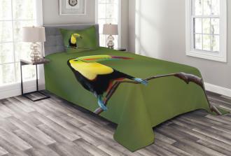 Keel Billed Toucan Bedspread Set