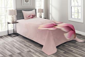 Fragile Flower Petals Bedspread Set