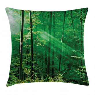 Forest Trees Morning Pillow Cover