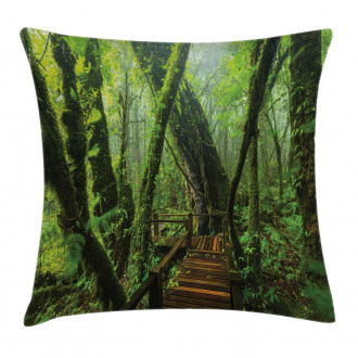 Entrance to Wilderness Pillow Cover
