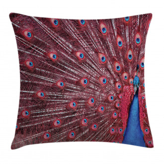 Peacock Bird Surreal Pillow Cover