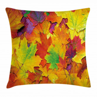 Colorful Maple Leaves Pillow Cover
