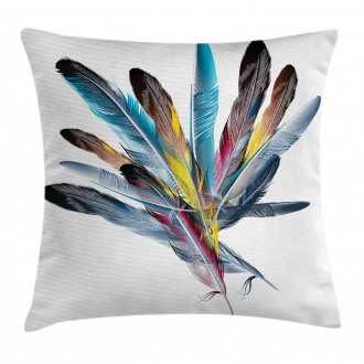 Colorful Feathers Old Pen Pillow Cover
