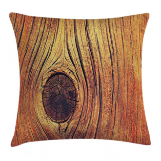 Aged Wooden Texture Pillow Cover