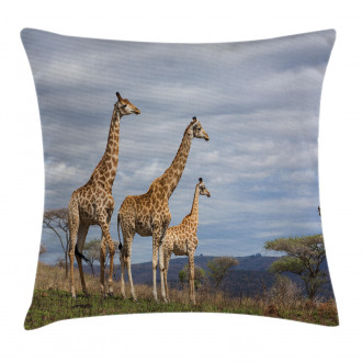 African Giraffe Family Pillow Cover