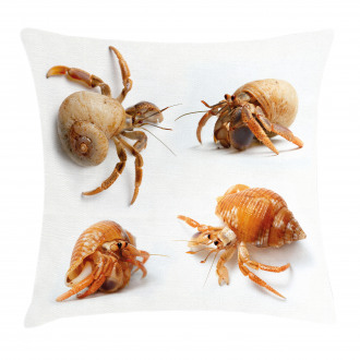 Hermit Crabs Pattern Pillow Cover