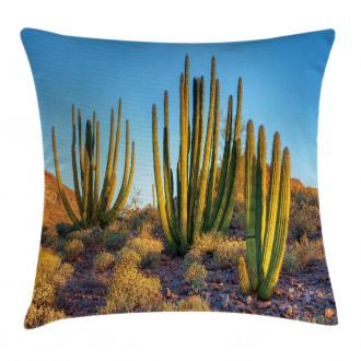 Mountain Cactus Photo Pillow Cover