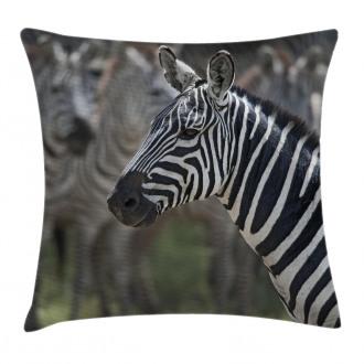 Zebra in Serengati Park Pillow Cover