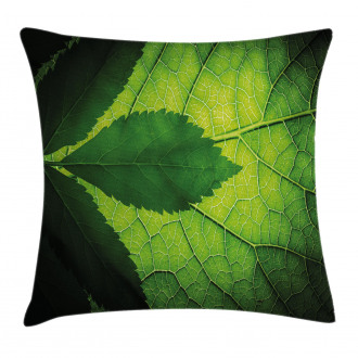 Brazilian Tree Leaf Eco Pillow Cover