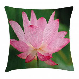 Lotus Lily Blossom Pillow Cover