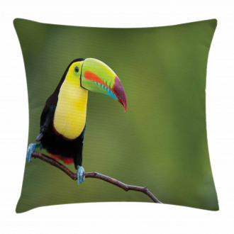 Keel Billed Toucan Pillow Cover