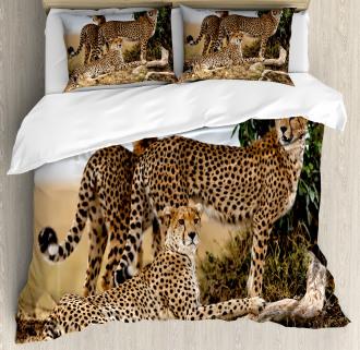 Safari Animal Cheetahs Duvet Cover Set