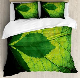 Brazilian Tree Leaf Eco Duvet Cover Set