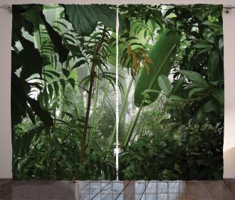 Tropical Rainforest Wild Curtain