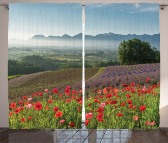 Lavender Farm Morning Curtain