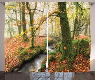 Misty Woods Cornwall Curtain