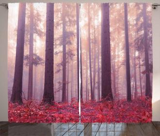 Trees Foggy Sunlight Curtain