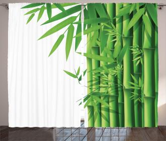 Modern Bamboos Stems Curtain