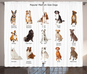 Puppy Breeds Family Curtain