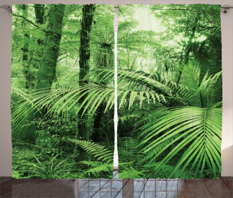 Palm Trees Exotic Plants Curtain