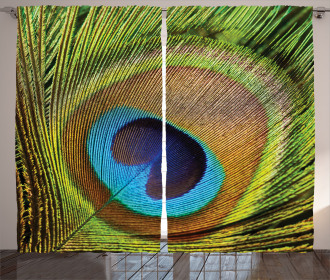 Green Peacock Feathers Curtain