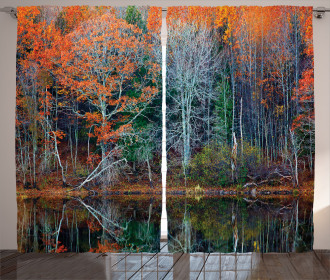Forest River Autumn Curtain