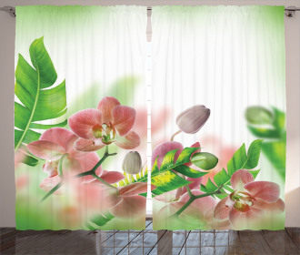 Orchids Blossoms Leaves Curtain