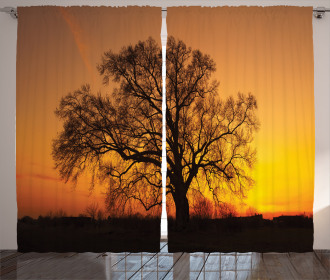 Old Oak at Sunset View Curtain