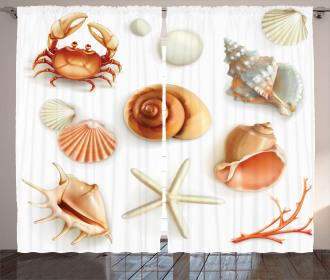 Seashells Marine Aquatic Curtain