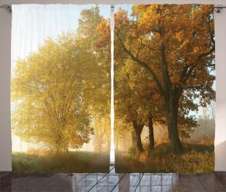 Autumn Morning Scenic Curtain