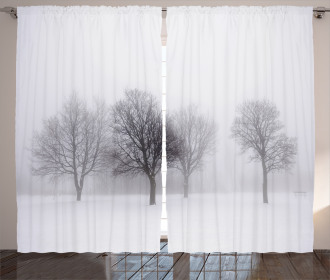 Misty Winter Scenery Curtain