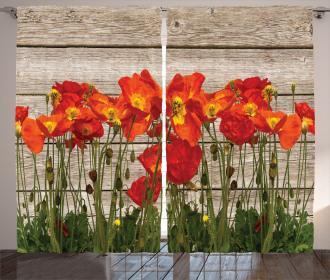 Blooming Poppy Flowers Curtain