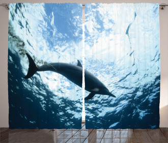 Swimming Dolphin Curtain