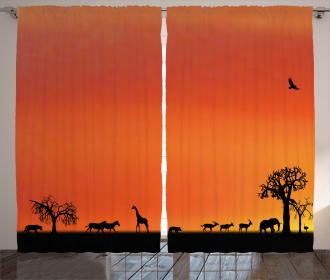 Safari Sunset with Gull Curtain