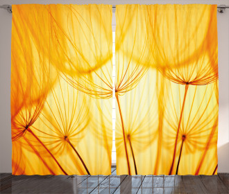 Dandelion Summer Garden Curtain