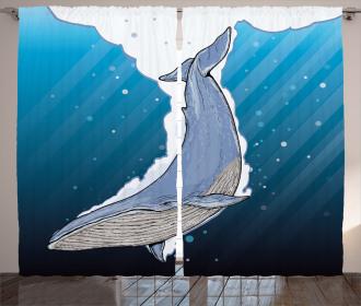 Ocean Whale Fish Swims Curtain