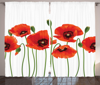 Pastoral Flowers Botany Curtain