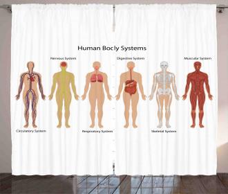 Skeleton System Curtain