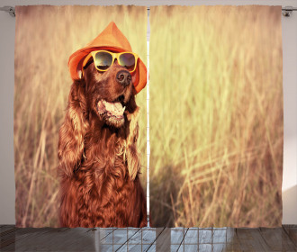 Dog Wearing Hat Glasses Curtain