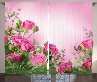 Spring Season Roses Buds Curtain