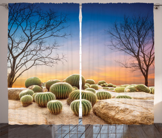 Cactus Balls on Mountain Curtain