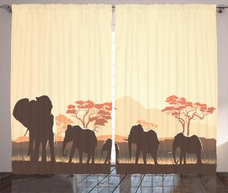 Safari Animal Elephant Curtain