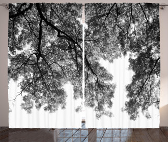 Tree Branches and Leaves Curtain