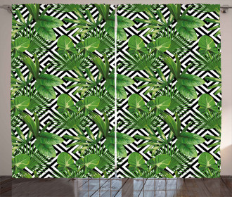 Modern Coconut Palm Curtain