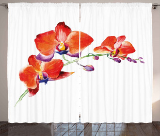 Orchid Branch Blooms Curtain